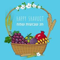 Traditional fruit basket and crops Jewish holiday shavuot concept and Text in Hebrew Happy Shavuot vector