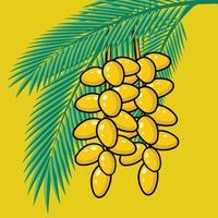 Fresh Dates on palm tree tropical fruits and palm leaves vector illustration