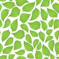Fondo transparente de hojas verdes sobre un fondo blanco. vector