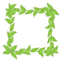 Deciduous frame with stems and green leaves isolated on white background vector