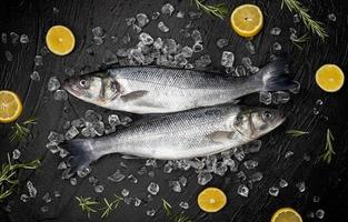 Seabass fish on ice on black stone background top view photo