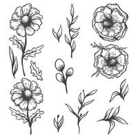 Collection Blossom and Leaves Monochrome vector