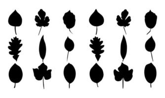 collection of leaf silhouettes vector illustrations