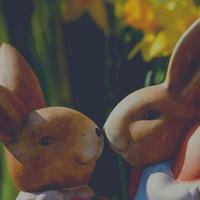 Square background of two bunny figures photo