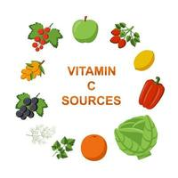Collection Fruits and vegetables vitamin C sources vector