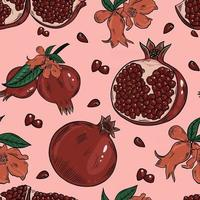 Pomegranate fruits seamless colorful pattern vector