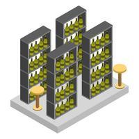 Isometric Wine Cellar vector
