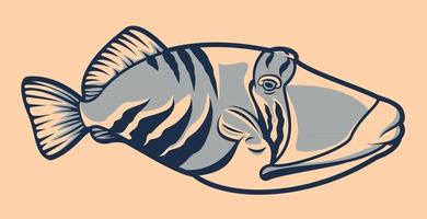 Tropical fish illustration vector on the white background