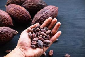 granos de cacao y cacao seco foto