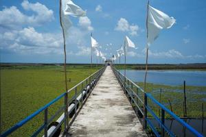 The cement walkway with a steel fence and white flags into a large lake of lotus with a blue sky background. photo