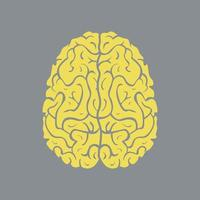 Icon left and right hemisphere of human brain vector