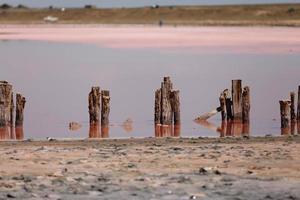 Un fantástico lago de sal rosa con cristales de sal sobre pilares de madera en un día soleado foto