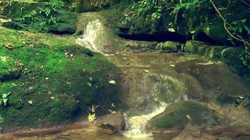 Calm Cinematic Scenery of Stream Flowing Over Rocks video