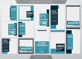 plantilla de publicaciones e historias en redes sociales vector