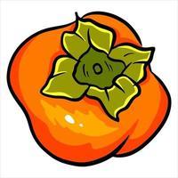 Juicy bright persimmon vector