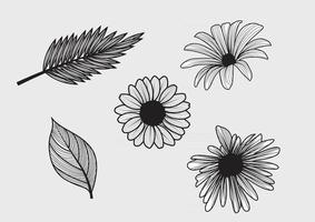 Set of Vintage Leaf and Flowers vector