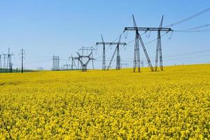 High voltage circuits in a field of grapeseed and blue sky photo