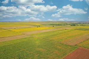 Aerial top view photo from flying drone of a land with sown green fields in countryside