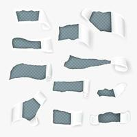 Torn Paper Curls Realistic Set Vector Illustration