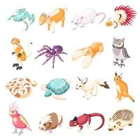 Exotic Pets Isometric Icons Vector Illustration