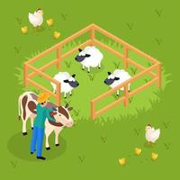 Cattle Farming Isometric Composition Vector Illustration