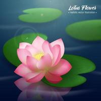 Lotus Flower Realistic Background Vector Illustration