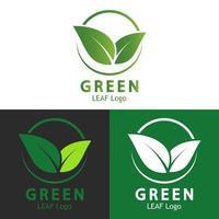 hoja verde logo ecología naturaleza vector