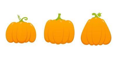 3 orange pumpkins set with leaf and gradient colors flat style design vector illustration