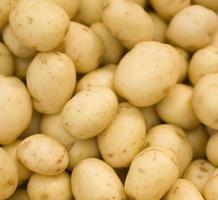 Raw potatoes background photo