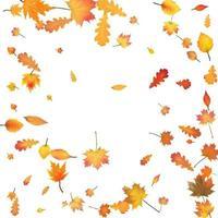 fondo de otoño con vector de hojas de otoño dorado