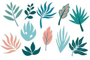 Set of tropical leaf, greenery, leaves, twig, branch. Hand drawn botanical graphic elements. vector