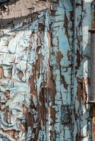Old wall with blue paint photo
