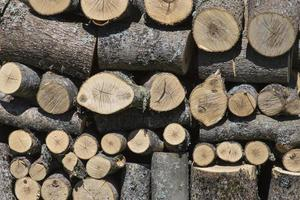 Stacks of Firewood Wall firewood background of dry chopped firewood in a pile photo
