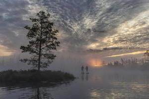 Amanecer en pantano neblinoso con pequeños árboles muertos cubiertos en las primeras horas de la mañana con gente en tablas de sup foto