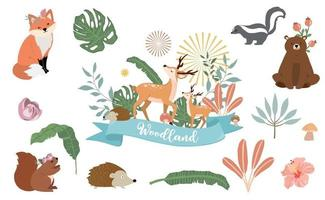 Cute woodland object collection with animal vector