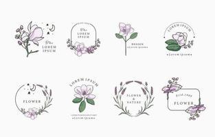 colección de objetos de magnolia de belleza vector