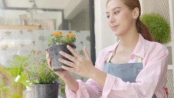 pequeña empresa asiática feliz floristería cuidando sus flores frescas video
