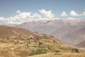 Colca canyon Arequipa Peru photo