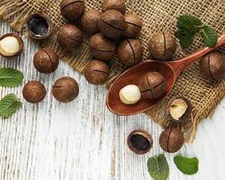 Organic Macadamia nuts photo