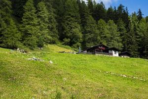 refugio de montaña y bosque foto