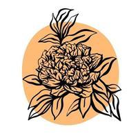 Peony flower hand drawn vector illustration. Minimalist modern illustration. Design of greeting cards, invitations, social networks