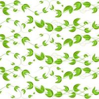Vector l seamless pattern with green wicker ivy sprouts and leaves with heart on white background