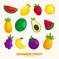 Summer Fruit Icon Collection vector