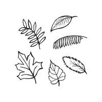 Set of doodle leaves vector
