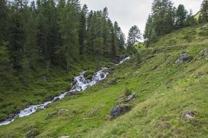 Stream in the Alps of South Tyrol photo