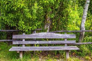 Empty wooden bench photo