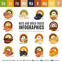 Nuts Flat Infographics Vector Illustration
