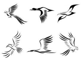 conjunto de seis imágenes vectoriales de varias aves volando, como faisán, gaviota, pato real, grúa, cálao y guacamayo, buen uso para símbolo, mascota, icono, avatar y logotipo vector
