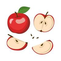 Red apple icons set. Whole fruits and halves with seeds and leaves. Food for a healthy diet. Sweet snack. Vector flat illustration