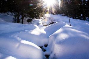 Sunbeams on the snowy stream photo